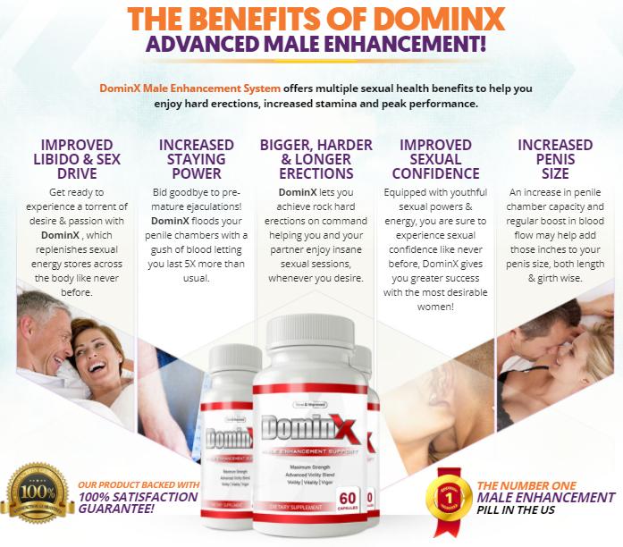 DominX