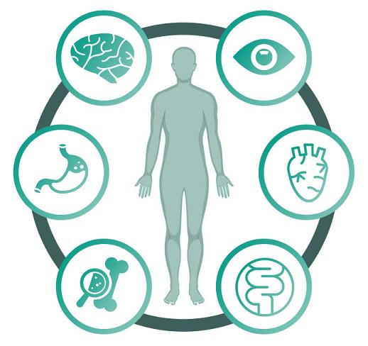 Essential CBD Extract Benefits